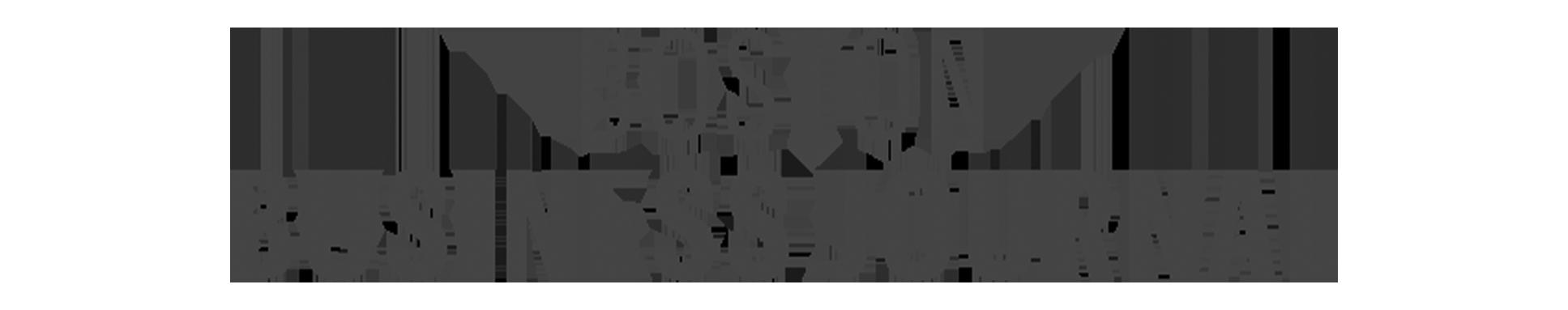 bostonbusinessjournal-grey